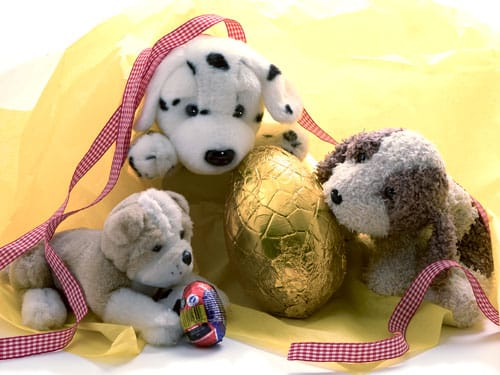 product photography of toys -spot the soft toy with easter egg