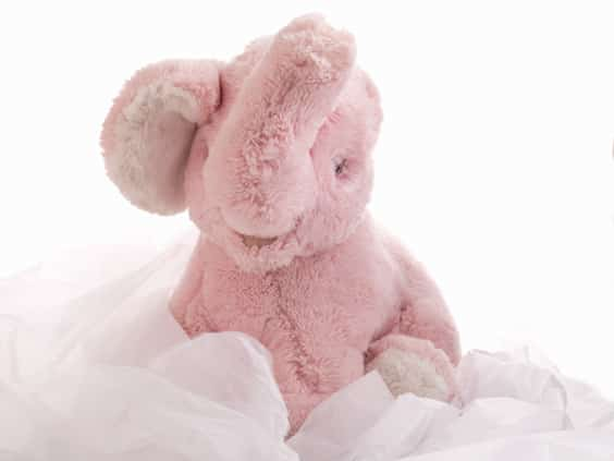 product photograph of a soft toy elephant